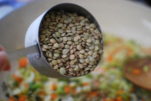 Fresh Uncooked Lentils